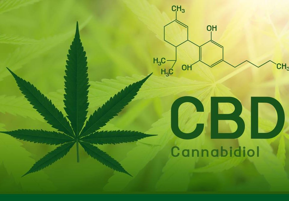 what-is-cbd-oil-and-what-do-you-use-it-for